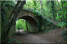 SU4726 : Disused railway bridge by David Lally