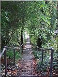 TQ3355 : Steps down the hill, Caterham by Malc McDonald