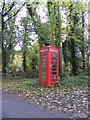 TM1576 : Brome Telephone Box by Adrian Cable