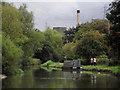 SJ5680 : The Bridgewater Canal near Preston Brook, Cheshire by Roger  Kidd