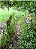 NS5420 : Footbridge, Dumfries House estate by Humphrey Bolton