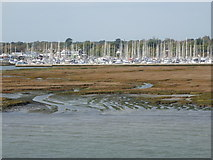 SZ3394 : Lymington: the marina from the south by Chris Downer