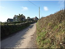 SX5547 : The lane past Rowden Court by David Gearing
