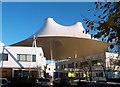 SU4891 : Milton Park, The Canopy by Des Blenkinsopp