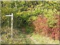 TQ3557 : Public footpath at Woldingham by Malc McDonald