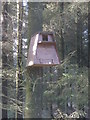 SS9839 : Owl nesting box, Withypool Common by Roger Cornfoot
