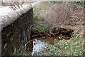 NT3338 : Start of the mill lade above Innerleithen by Jim Barton