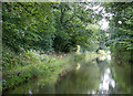 SJ5877 : Trent and Mersey Canal south-east of Dutton, Cheshire by Roger  Kidd