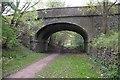 NY7807 : Bridge over dismantled railway by Ian Taylor