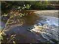 SX5258 : River Plym by Derek Harper