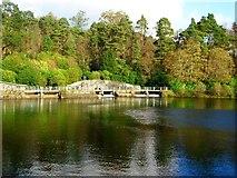 NS5576 : Mugdock Reservoir [7] by Robert Murray
