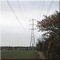 TQ8999 : Pylon on field boundary by Roger Jones