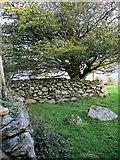 S7343 : Medieval Fort by kevin higgins
