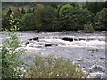 NN5732 : Falls of Dochart, Killin (2) by nick macneill