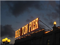 TQ3103 : Lights, Palace Pier by Simon Carey