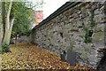 SK5804 : Castle Wall by Ashley Dace