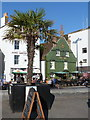 SZ0190 : Poole: a palm tree and the Poole Arms by Chris Downer