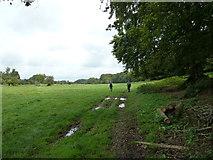 SU6017 : South Downs Society Green Travel Walks Week (156) by Basher Eyre