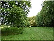 SU6017 : South Downs Society Green Travel Walks Week (160) by Basher Eyre