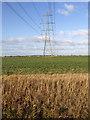 SE8321 : Pylon line crossing field south of Ousefleet by Trevor Littlewood