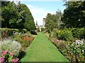 NX1160 : Herbaceous borders in the Walled Garden, Castle Kennedy by Humphrey Bolton