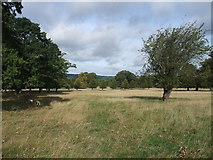SK2571 : Entering the Chatsworth Estate by Tim Heaton