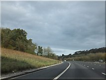ST3857 : M5 cutting east of Christon by David Smith