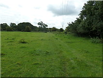 SU6017 : South Downs Society Green Travel Walks Week (166) by Basher Eyre