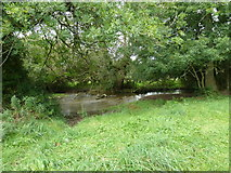 SU6017 : South Downs Society Green Travel Walks Week (168) by Basher Eyre
