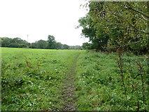 SU6017 : South Downs Society Green Travel Walks Week (170) by Basher Eyre