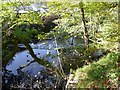 SE0025 : Weir on Cragg Brook, Mytholmroyd by Humphrey Bolton