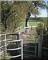 SP1665 : Two kissing gates at a path junction by Robin Stott
