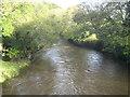 SX3584 : The River Tamar upstream of Polson Bridge by Rod Allday