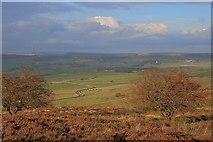 SK1973 : Longstone Moor by Mick Garratt