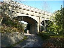 SE0125 : The railway viaduct at Mytholmroyd by Humphrey Bolton