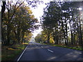 TG2119 : Entering Hainford on the A140  Cromer Road by Adrian Cable