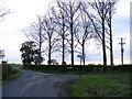 TM3686 : Moles Lane, Ilketshall st Margaret by Adrian Cable