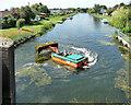 TF2729 : River Glen near Surfleet (2) by Stephen Richards