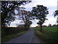 TM3585 : Moles Lane, Ilketshall St Margaret by Adrian Cable