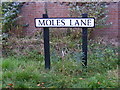 TM3585 : Moles Lane sign by Adrian Cable