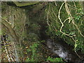 SJ6067 : Shay's Lane Brook by Dr Duncan Pepper