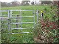 SJ6067 : A modern metal kissing gate beside Clay Lane Farm by Dr Duncan Pepper