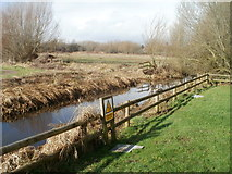 ST4286 : Whitewall Reen, Magor Marsh Nature Reserve by Jaggery