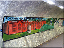 TL1314 : Station Road underpass murals by Thomas Nugent