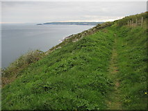 SX3354 : Coast path above Battern Cliffs by Philip Halling