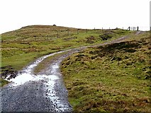 NY8235 : Coldberry End and Grasshill Causeway by Oliver Dixon