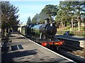 SP0229 : Steam Freight Locomotive at Winchcombe by Rob Newman