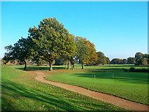 TQ1372 : Hampton Golf Course by Des Blenkinsopp