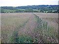 SK3957 : Hay meadows at Lower Delves Farm by Trevor Rickard