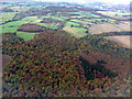 TL1923 : Hitch Wood from the air by Thomas Nugent